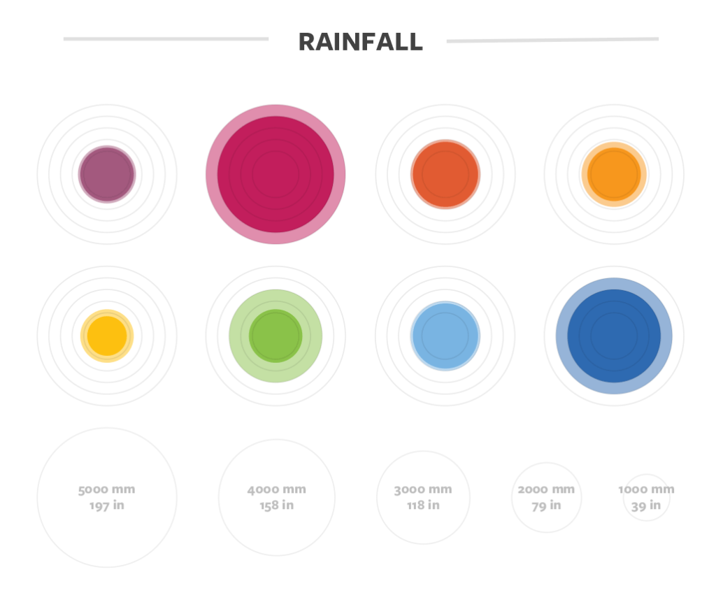 Rainfall details for coffee in Guatemala