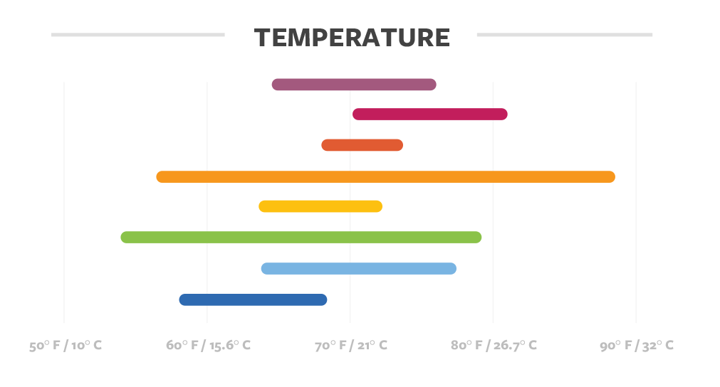 Temperature details for coffee in Guatemala