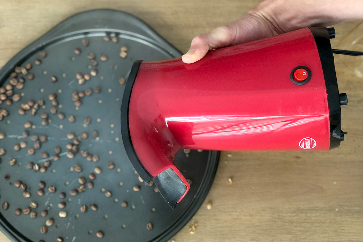 Dumping roasted coffee onto a tray